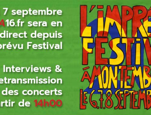 Interview Imprévu Festival – Bénévole sur l'événement